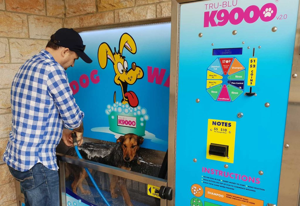 Coin operated dog wash